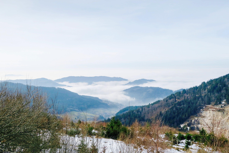 Erholen im Schwarzwald – Baiersbronn