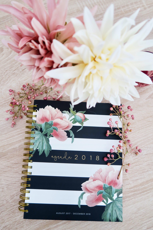 Life Update Frau Schirra bloggt
