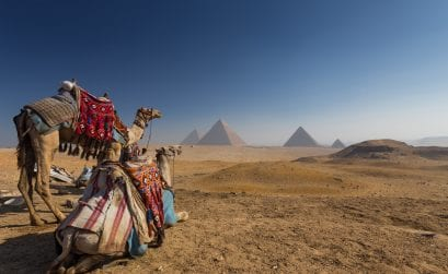 Realtourismus oder Fake?